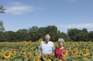 Pee Dee Land Trust protects its second largest working farm