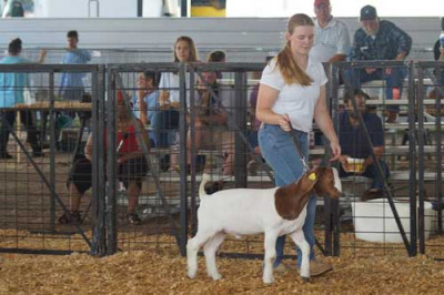 4-H on display Pee Dee youth celebrate National 4-H Week  at the Eastern Carolina Agricultural Fair